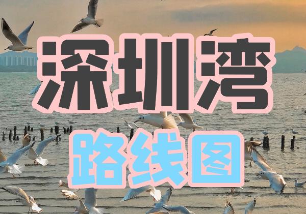 深圳湾地图