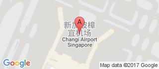 樟宜国际机场的地图